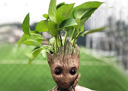 FREE Groot Plant Holder
